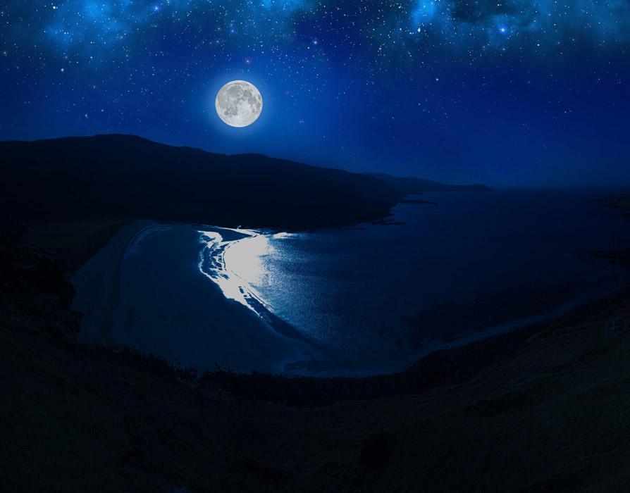 夏の海と咲く 月の夜